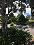 Crows Nest Motel Gardens